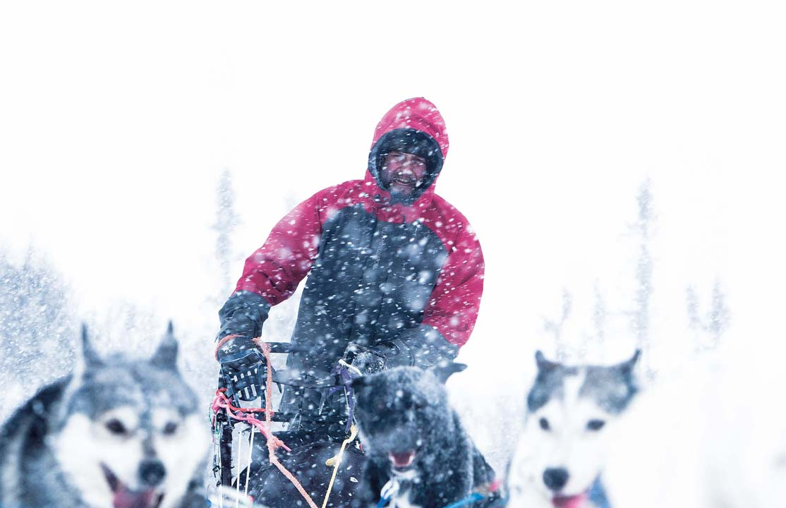 Nicklas blom drives a dog sled in åre.