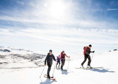 Book a ski tour in åre