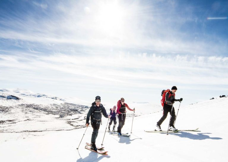 Book a ski tour in åre